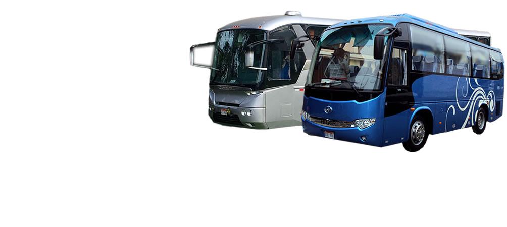 servicio de transporte turístico